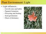 plant environment light2