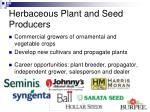 herbaceous plant and seed producers