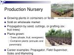 production nursery