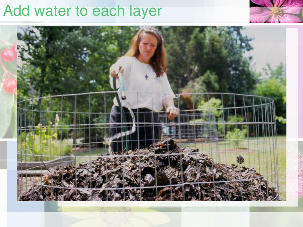 Add water to each layer
