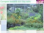 compost loosens our clay soils