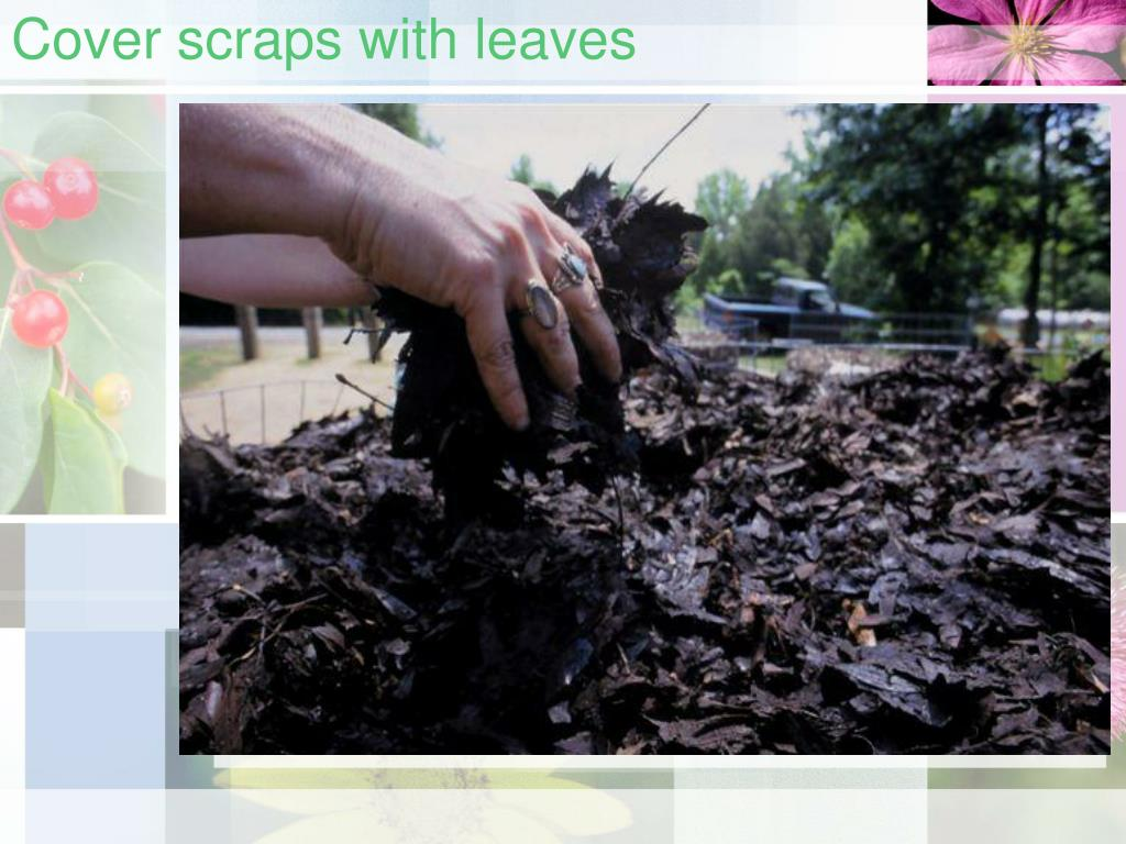 Cover scraps with leaves