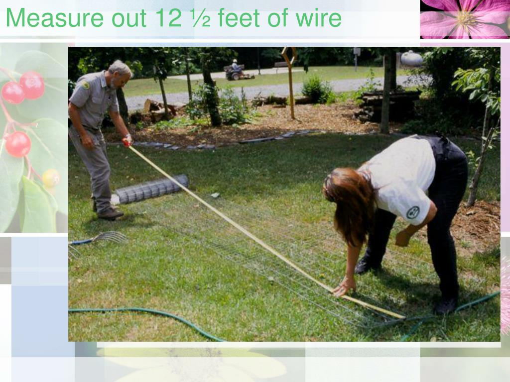 Measure out 12 ½ feet of wire