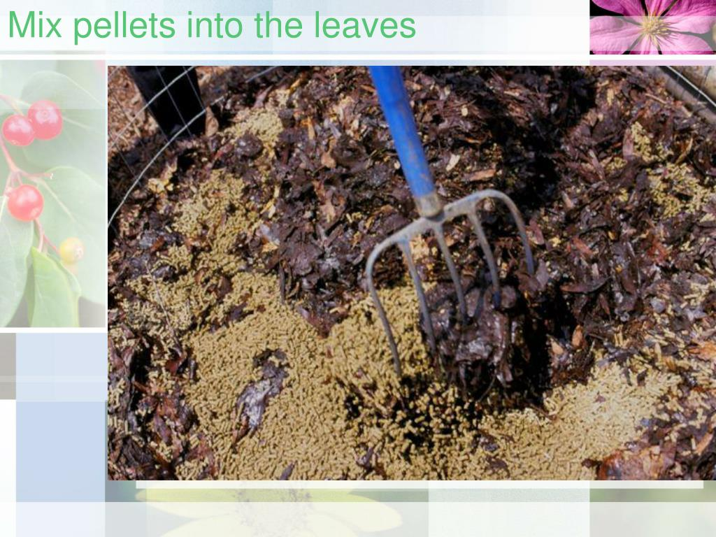 Mix pellets into the leaves