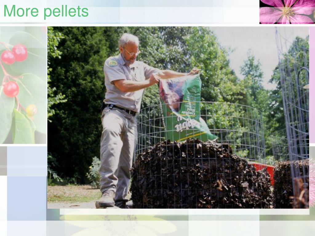 More pellets