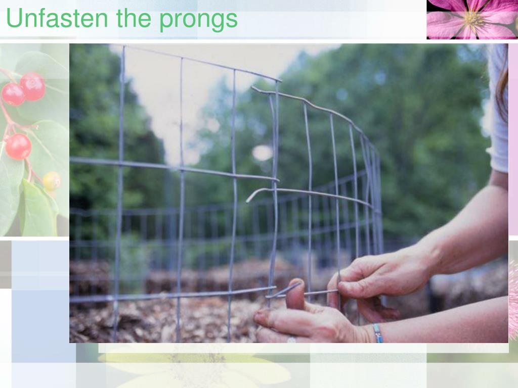 Unfasten the prongs