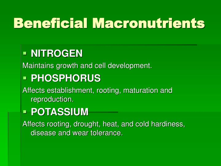 Beneficial macronutrients