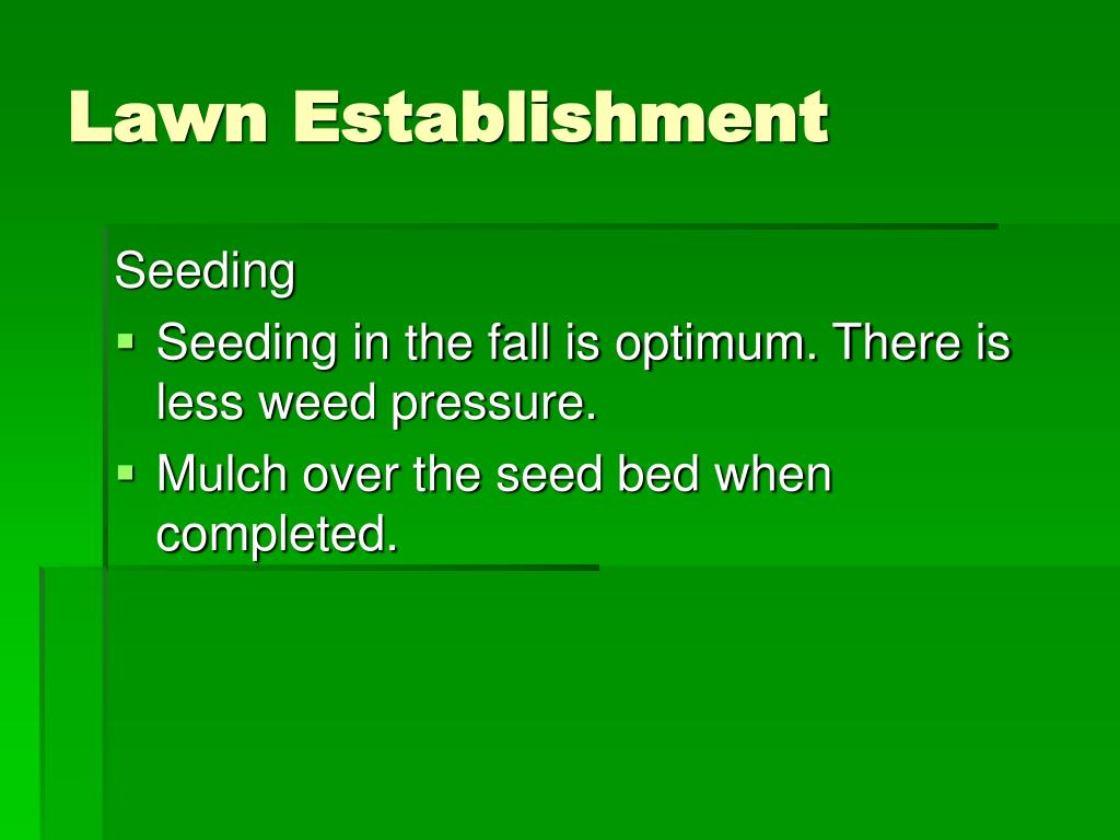 Lawn Establishment