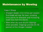 maintenance by mowing37