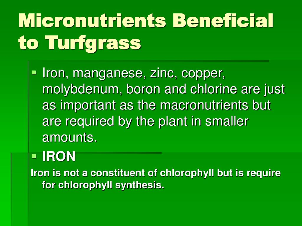 Micronutrients Beneficial to Turfgrass