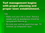 turf management begins with proper planning and proper lawn establishment
