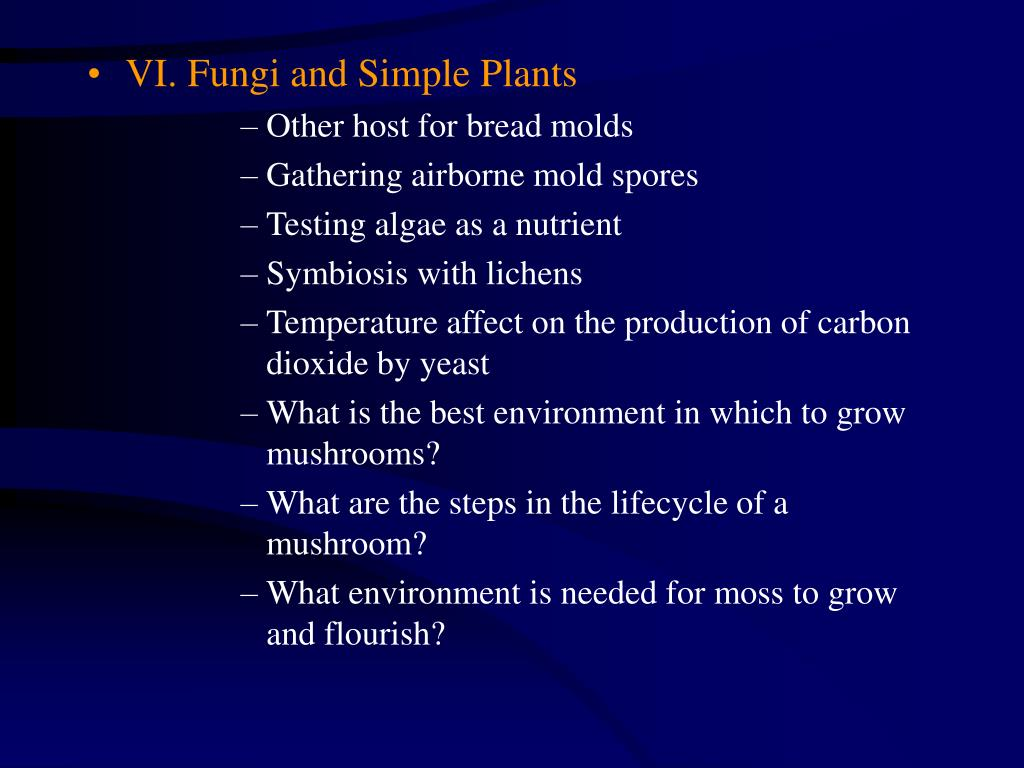 VI. Fungi and Simple Plants