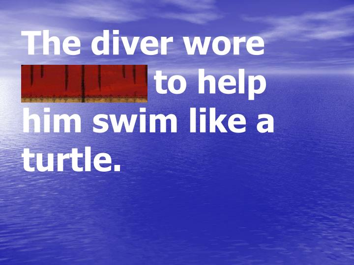 The diver wore flippers to help him swim like a turtle.