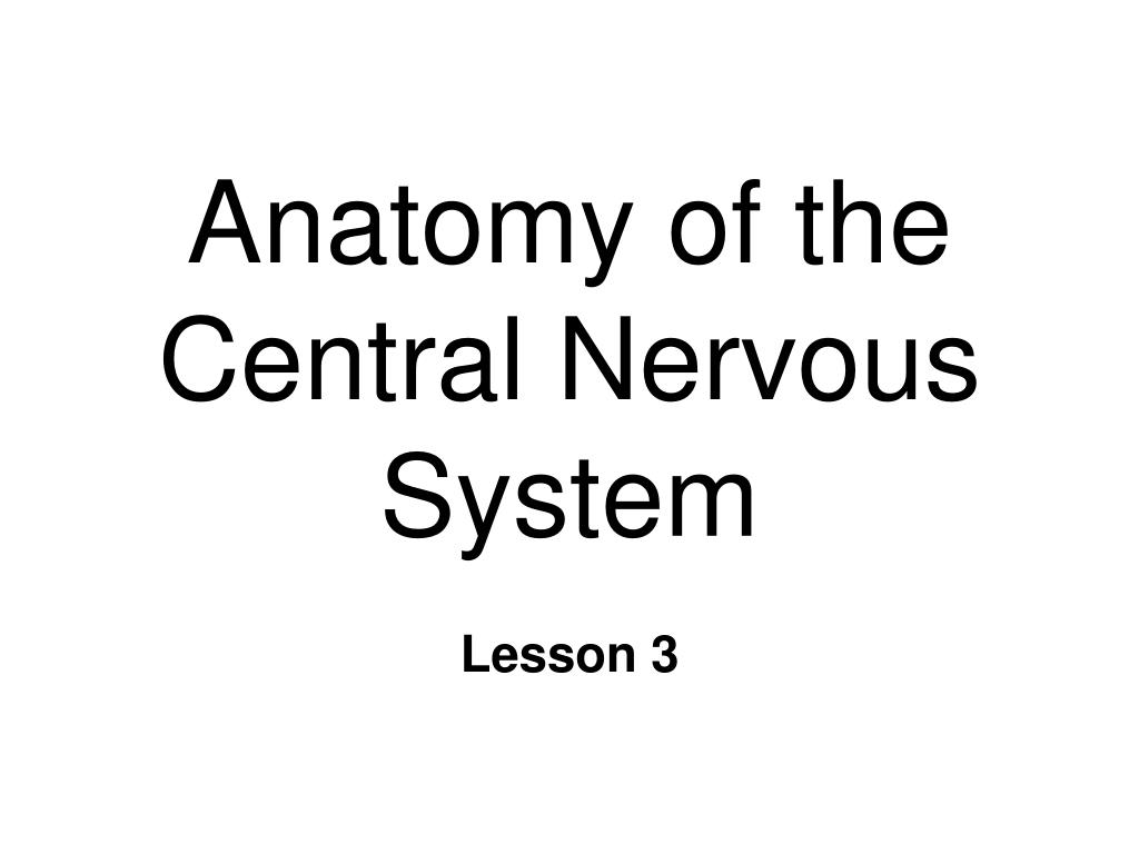 Ppt Anatomy Of The Central Nervous System Powerpoint Presentation