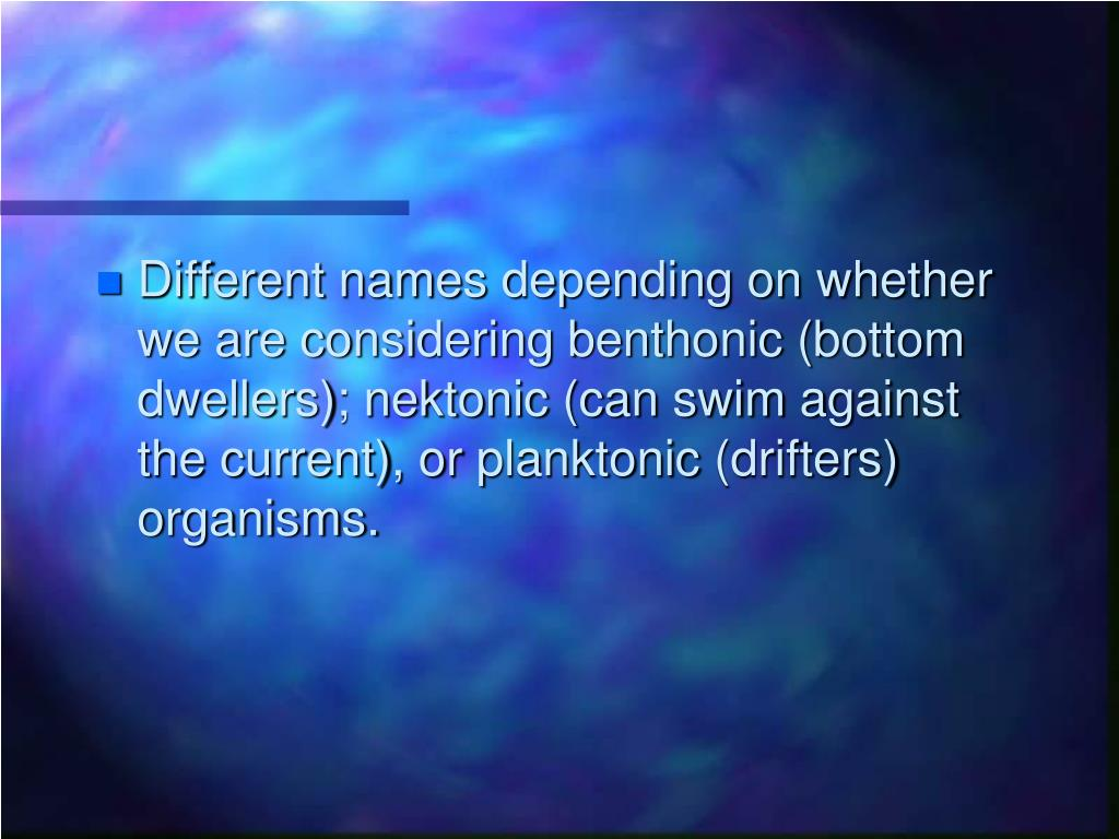 Different names depending on whether we are considering benthonic (bottom  dwellers); nektonic (can swim against the current), or