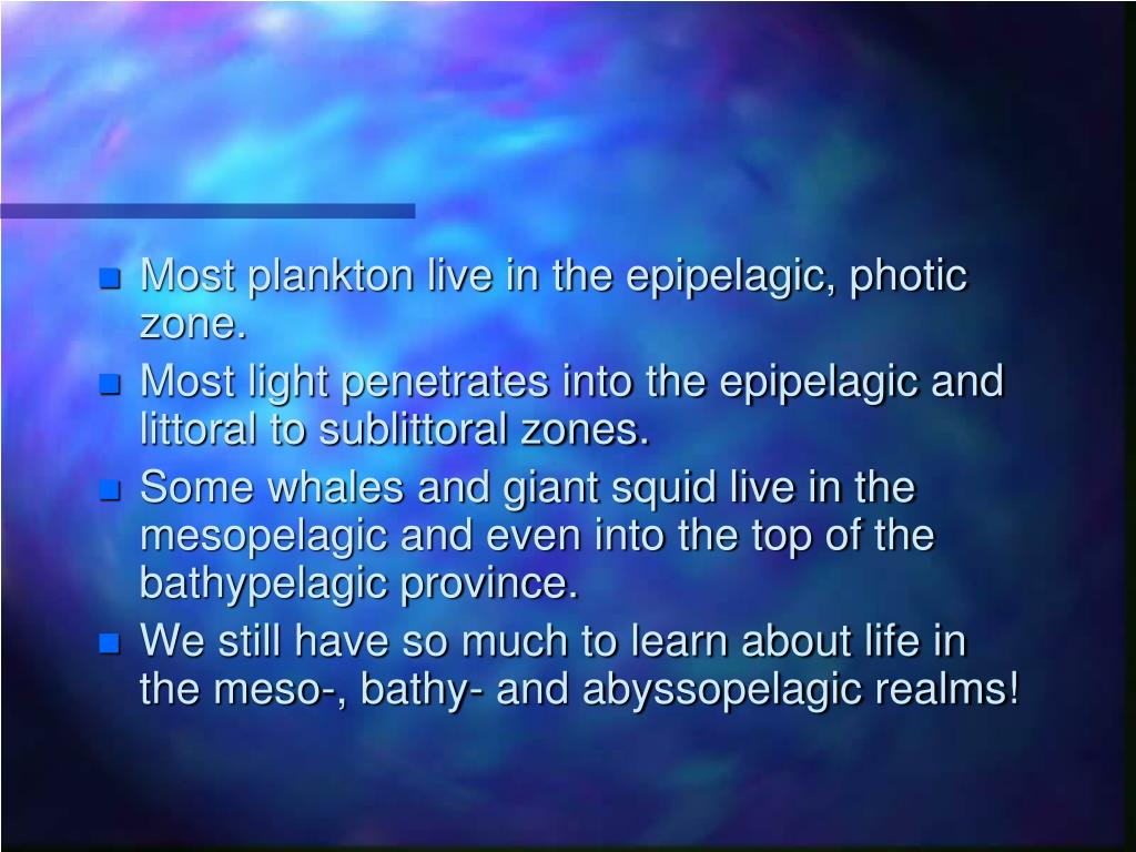 Most plankton live in the epipelagic, photic zone.