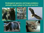 endangered species and large predatory animals need a place to live and survive