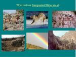 what defines designated wilderness