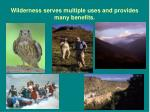 wilderness serves multiple uses and provides many benefits