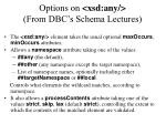 options on xsd any from dbc s schema lectures