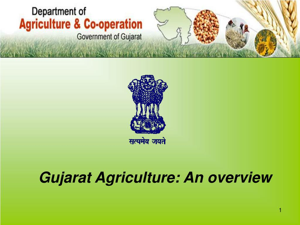 gujarat agriculture an overview l.