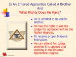 is an entered apprentice called a brother and what rights does he have