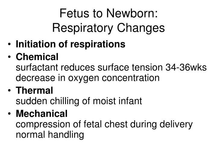 Fetus to newborn respiratory changes