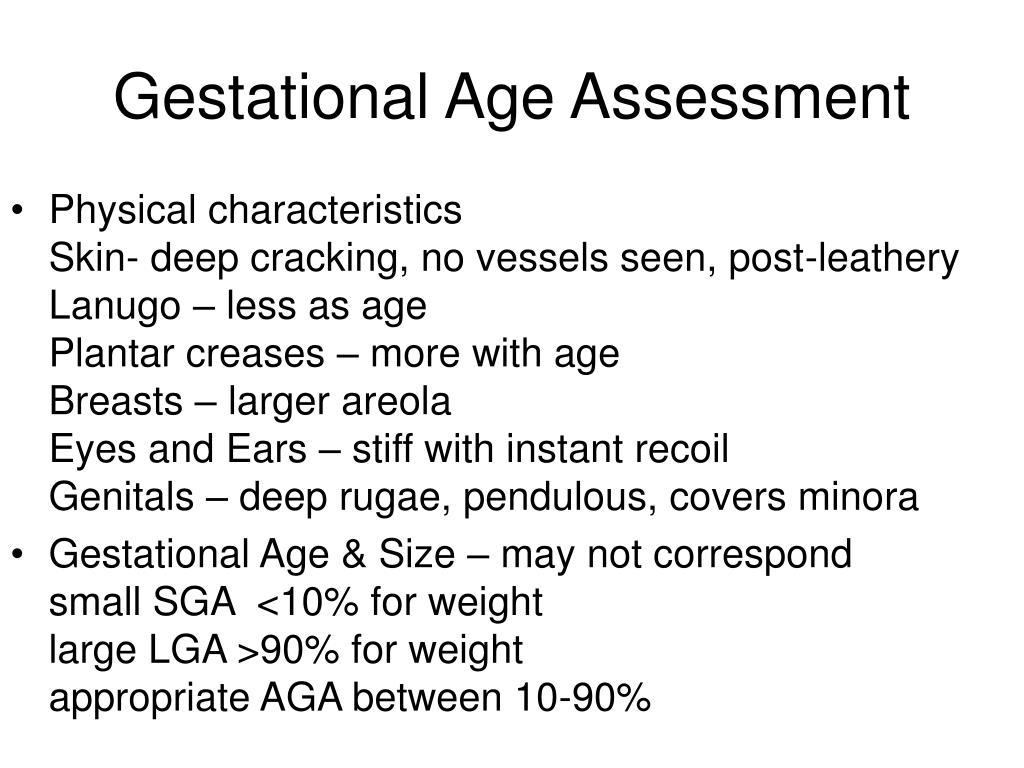 Gestational Age Assessment