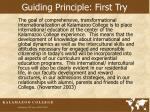 guiding principle first try