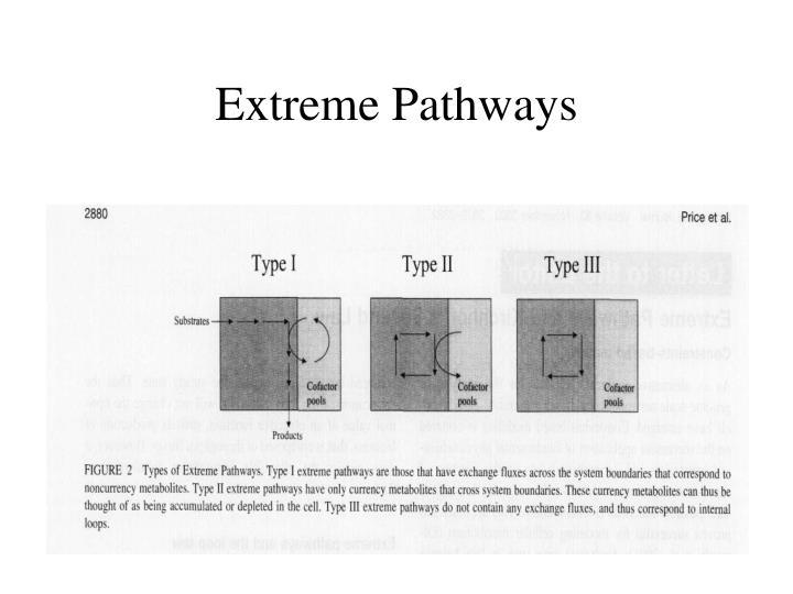 Extreme Pathways