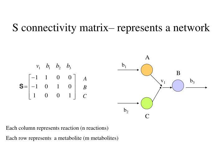 S connectivity matrix represents a network