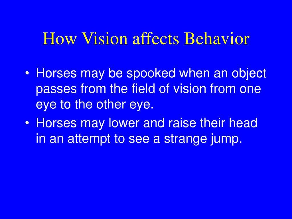 How Vision affects Behavior