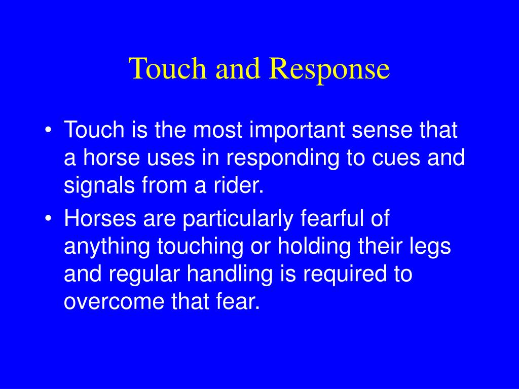 Touch and Response