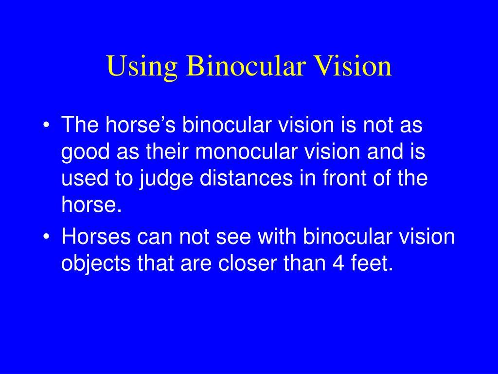 Using Binocular Vision