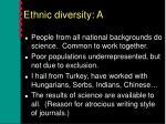 ethnic diversity a