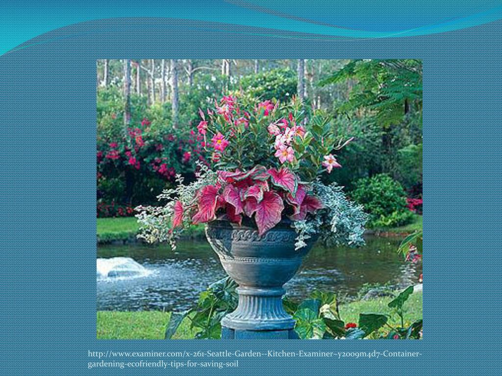 http://www.examiner.com/x-261-Seattle-Garden--Kitchen-Examiner~y2009m4d7-Container-gardening-ecofriendly-tips-for-saving-soil