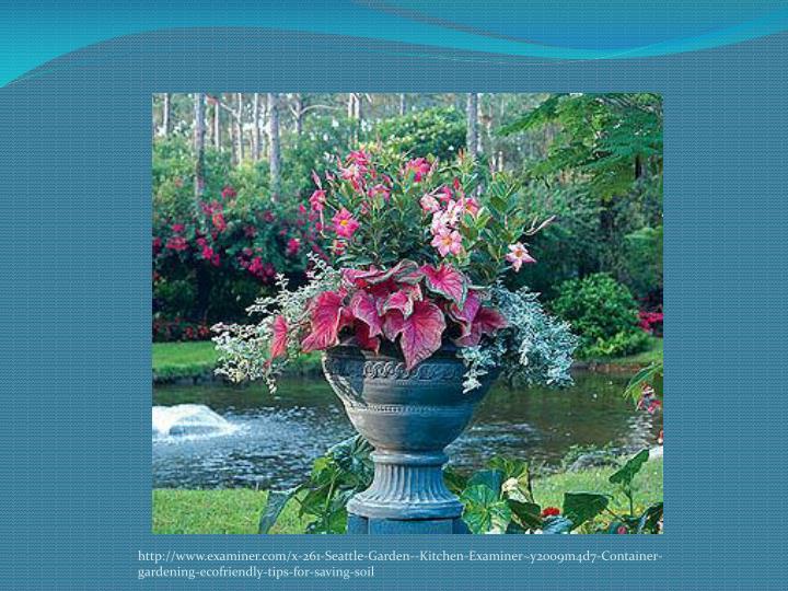 Http://www.examiner.com/x-261-Seattle-Garden--Kitchen-Examiner~y2009m4d7-Container-gardening-ecofrie...