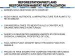 reforestation wetland restoration habitat revitalization