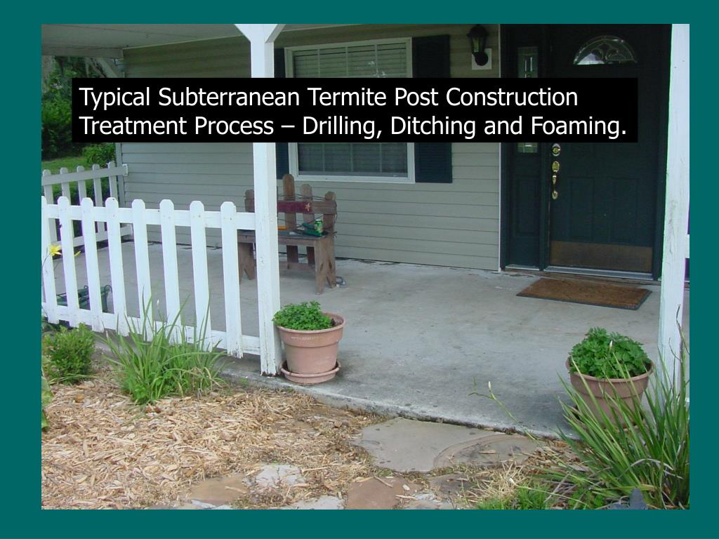 Typical Subterranean Termite Post Construction