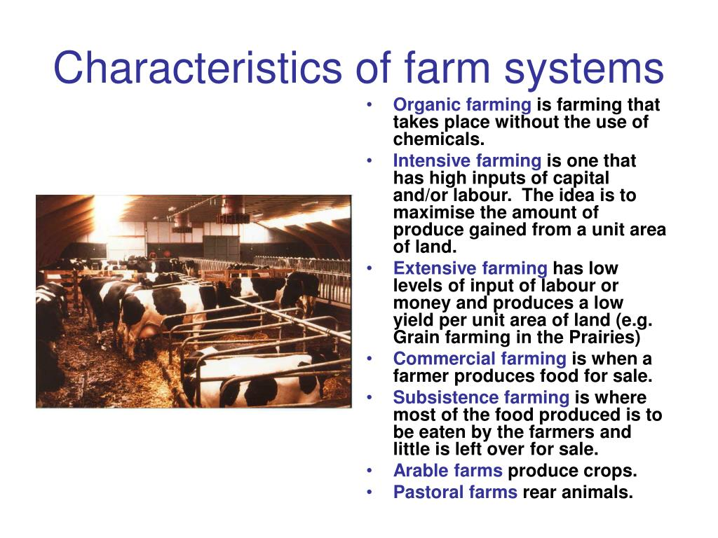 Characteristics of farm systems