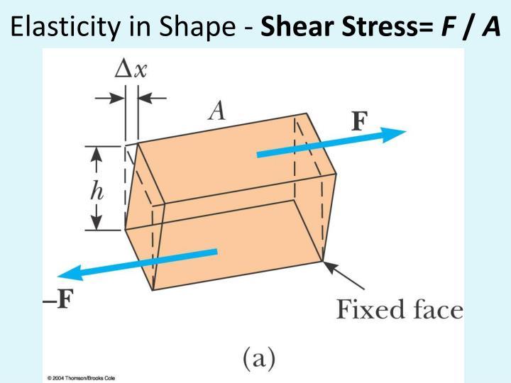 Elasticity in Shape -