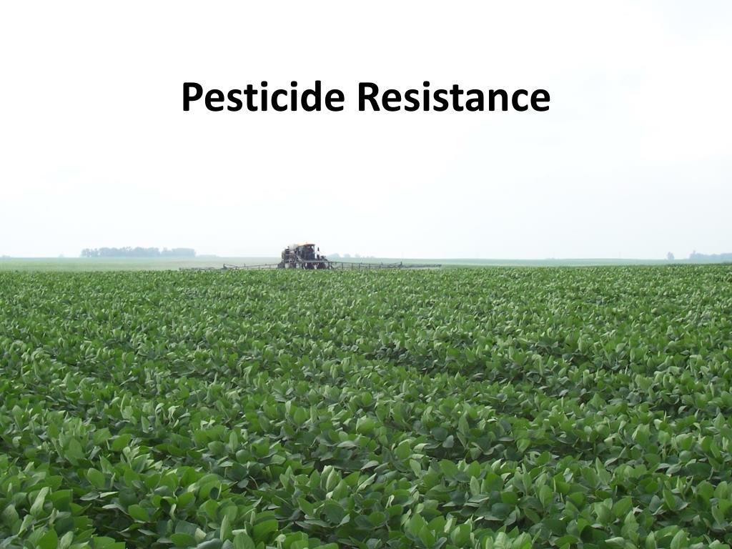 Ppt pesticide resistance powerpoint presentation id664988 xflitez Images