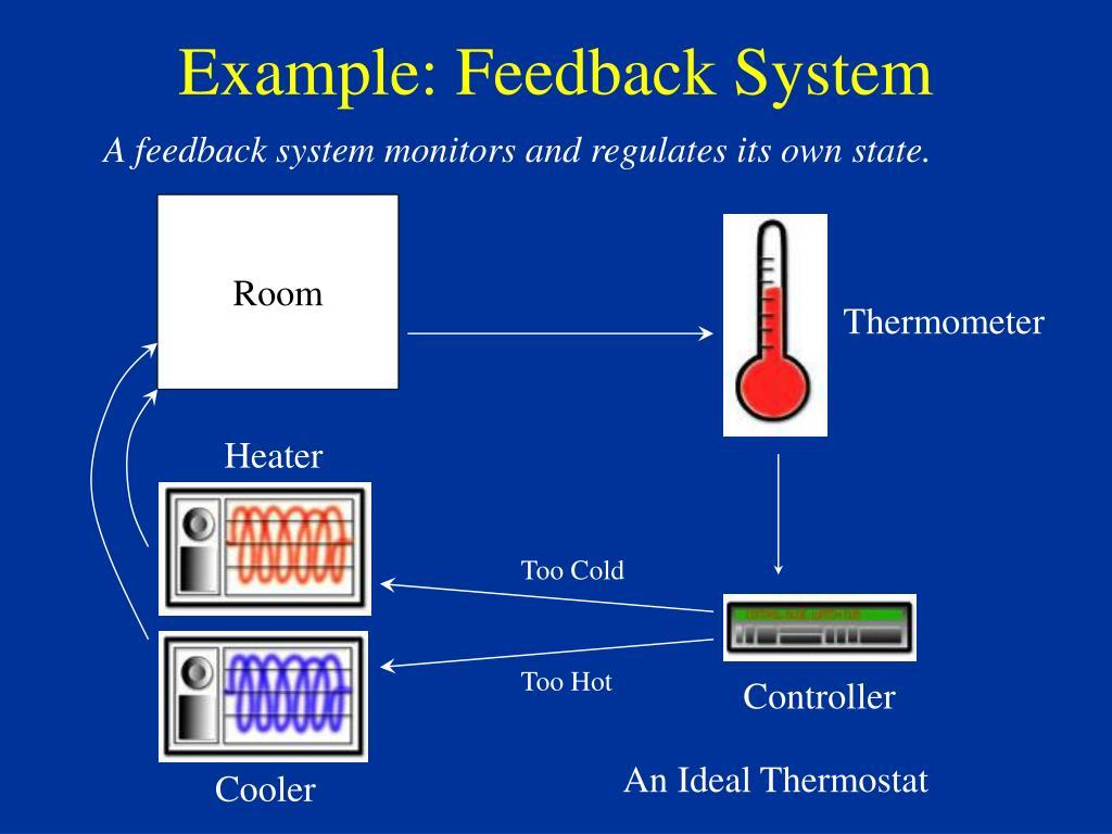Example: Feedback System