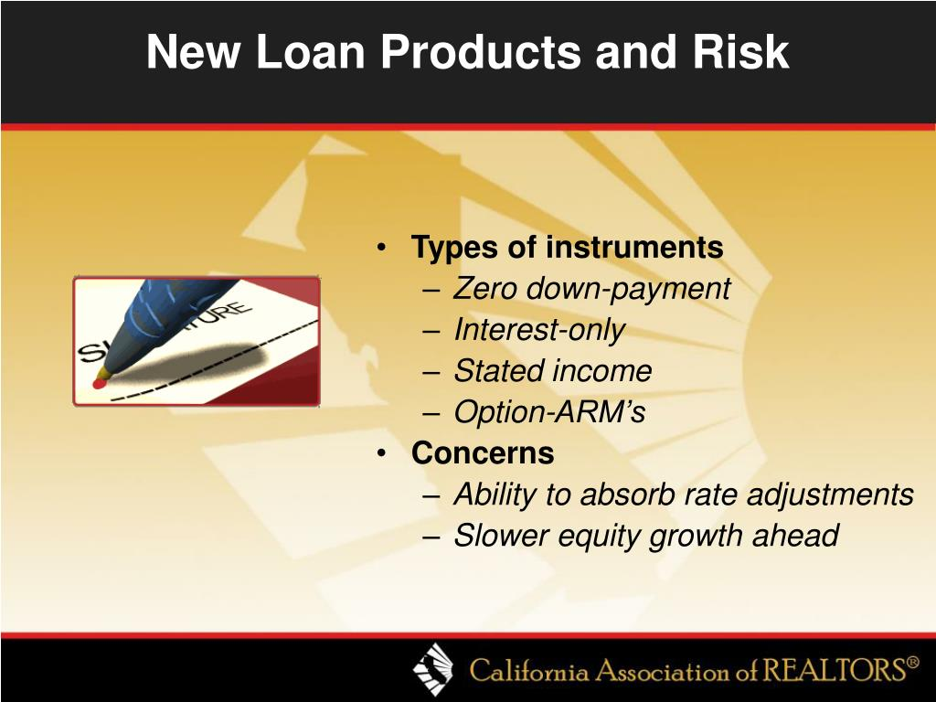 New Loan Products and Risk