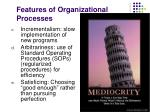 features of organizational processes27