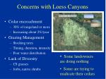 concerns with loess canyons