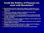 could the politics of pleasure co exist with revolution