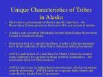 unique characteristics of tribes in alaska