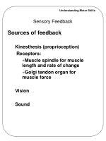 sensory feedback8