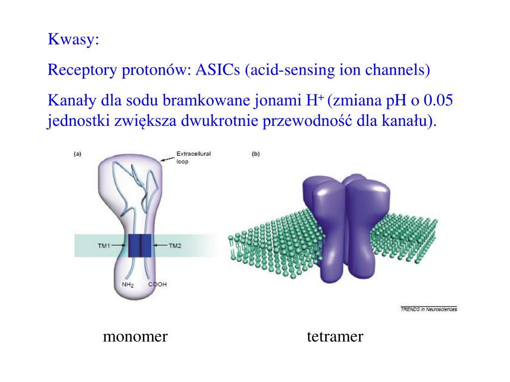 Kwasy: